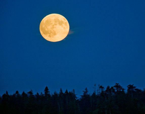 moon comparison 1