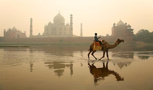 India Econ